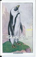 Chromo - Les Oiseaux - Pingouin - Bon Point - Anémie - Sirop Deschiens - N° 47 - Andere