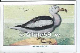 Chromo - Les Oiseaux - Albatros - Bon Point - Anémie - Sirop Deschiens - N° 43 - Andere