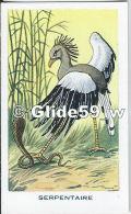 Chromo - Les Oiseaux - Serpentaire - Bon Point - Anémie - Sirop Deschiens - N° 26 - Cromo