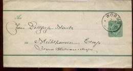 74440 R - Bande De Journal  3 Pf Vert Cad WORMS 6 1889 Pour L'ALSACE TTB - Ganzsachen