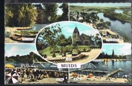 MUIDS . - Muids