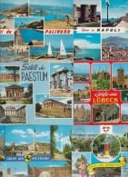 10 CART.  SALUTI DA ... (60) - Cartes Postales