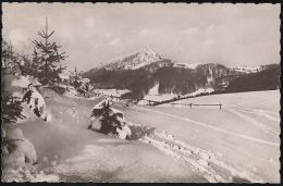 D-36115 Hilders - (Rhön)  - Winterpracht - Maulkuppe Auf Milseburg - Landpoststempel ! - Hilders