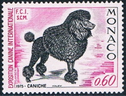 Monaco - Exposition Canine Internationale, Caniche 1037 ** - Dogs