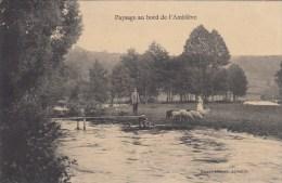 Paysage Au Bord De L'Amblève - 1922 - ( Moutons ) - Aywaille
