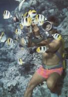 Bora-Bora - Le Plongeur Du Bateau à Fond De Verre Avec Ses Poissons Apprivoisés - Polynésie Française