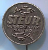 FISHING / ANGELN / PESCA - STEUR, Netherlands, Vintage Pin, Badge - Pin