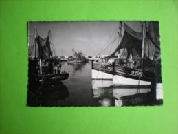 5 Cpa Belges, Ostende, La Gileppe, Namur, Anvers, Bruxelles       H - 5 - 99 Postkaarten