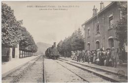 MASSIAC - La Gare  (Cie P.O) (Arrivée D'un Train D'Arvant) - France