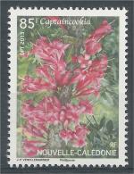 New Caledonia, Flower, Captaincookia, 2013, MNH VF - Nuova Caledonia