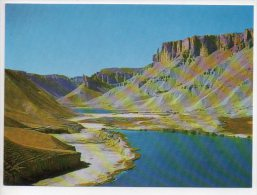 REF 186 CPSM AFGHANISTAN Band I Amir - Afghanistan