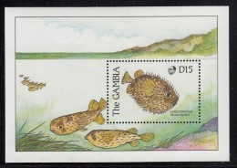 Gambia MNH Scott #895 Souvenir Sheet 15d Porcupinefish - Gambie (1965-...)