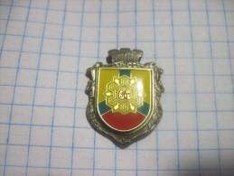 Ukraine. Kirovograd ( Former Elisavetgrad) Coat- Of- Arms. Soft Enamel+ Poly Dome. - Cities