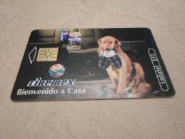 MEXICO - RARE phonecard dog
