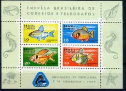 BRESIL FAUNE MARINE  BF23 1969 LUXE ** - Vissen