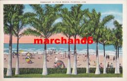 Etats Unis Florida February In Palm Beach - Palm Beach