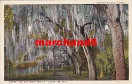 Etats Unis Florida Garnett Orange Grove Drive St Augustine - St Augustine