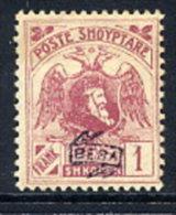 ALBANIA 1922 Skanderbeg & Eagle With Control Overprint II On 1 Fr. LHM / *.  Michel 81 II - Albania