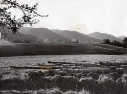 Tirage De Photo Des Années 1950 Champs Et Collines  Près De CAZERES , Htes Pyrénées, (bl.1)  17x21cms - Proyectores De Cine
