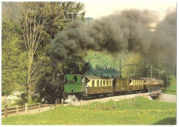 TRAIN Suisse - EISENBAHN Schweiz - GSTEIGWILER - Train Avec Locomotive à Vapeur G 3/4 11 - Photo R. Willen - Trains