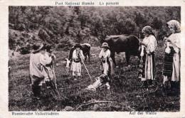 Rumänische Volkstrachten - Auf Der Weide, 1921 - Rumänien