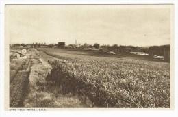 Australia, Queensland (QLD), Maryborough, Huxley, North Coast Railway Station, Sugar Cane Mills, Printed Postcard - Australien