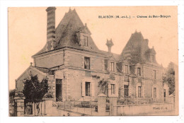 *°* BLAISON (M.-et-L.) - Château De Bois-Brinçon - Photo F.G. - En L´état - France