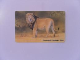 TELECARTE D'AFRIQUE DU SUD - LION - Afrique Du Sud