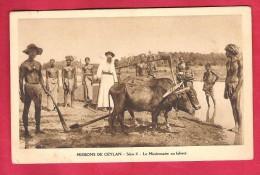 Asie-Sri Lanka-Mission De Céylan-Série II -le Missionnaire Au Labour--Taille Cpa Non écrite - Sri Lanka (Ceylon)