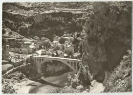 MAS ST CHELY  (81.Tarn)   Pont  - 6805 - Saint Chely D'Apcher