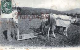 (64) Scènes Et Types Des Pyrénées -  Le Labourage - Attelage - Boeufs - Paysans - Paysan - 2 SCANS - France