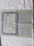 ACTION 100 FR CASINO MUNICIPAL DE TROUVILLE DE 1911 - Casino