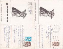 Animaux, Chien , Deux Enveloppes Entiers Postaux Russie, Une  Recommandée 1987 - Hunde
