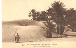 POSTAL  59.- SAHARA  - AFRICA  - MISSIONS DES PERES BLANCS  -PALMERALE ENVAHIE PAR LES DUNES - Sahara Occidental