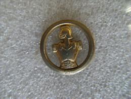 Petit Pin´s Insigne Métallique Réduction Militaria  Régiment Du Génie,métal Doré . - Army