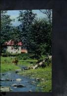 F2909 Azerbaijan, Balakən, Belokani, Bielokany, Belokany - Landscape, Paysage, Landschaft - Azerbaigian
