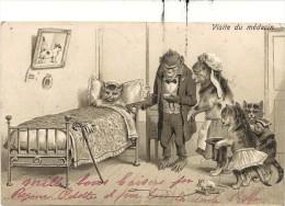 CHATS ET SINGES HABILLES -  Visite Du Médecin -  Carte Gaufrée - - Dressed Animals
