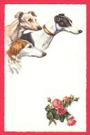 [DC5000] CARTOLINA -  CANI CON ROSE - ANIMALI - Non Viaggiata - Old Postcard - Chiens