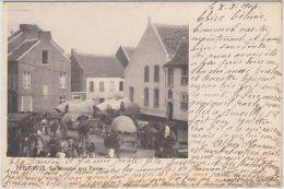 23706g  MARCHE Aux PORCS - ATTELAGE - Hannut - 1904 - Hannut
