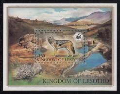 Lesotho MNH Scott #356 Souvenir Sheet 1.50m Black-backed Jackal  - Animals - World Wildlife Fund - Lesotho (1966-...)