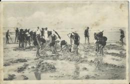 Bergen Aan Zee.  -  Aan Het Strand;  1936 - Nederland