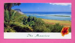 ILE MAURICE L' ILE AUX BENITIERS VUE DE CHAMAREL - Mauritius