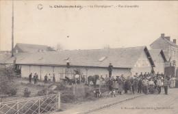 """CHATEAU Du LOIR (72) :""""Le Champignon"""" GILLARD Et MESURET Expéditeurs De Primeurs - Très Belle Carte . - Cultures"""