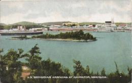 S S BERMUDIAN ARRIVING AT HAMILTON BERMUDA 81 - Bermudes
