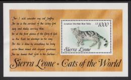 Sierra Leone MNH Scott #1645 Souvenir Sheet 1000le American Shorthair Blue Tabby - Cats Of The World - Sierra Leone (1961-...)