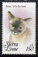 Sierra Leone MNH Scott #1644j 150le Brown Tortie Burmese  - Cats Of The World - Sierra Leone (1961-...)