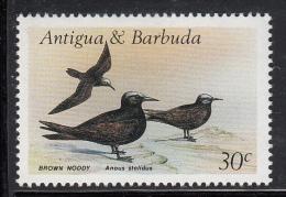 Antigua & Barbuda MNH Scott #1006 30c Brown Noddy - Birds - Antigua Et Barbuda (1981-...)