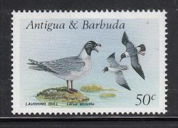Antigua & Barbuda MNH Scott #1008 50c Laughing Gull - Birds - Antigua Et Barbuda (1981-...)