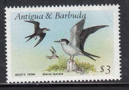Antigua & Barbuda MNH Scott #1012 $3 Sooty Tern - Birds - Upper Right Corner Crease - Antigua Et Barbuda (1981-...)