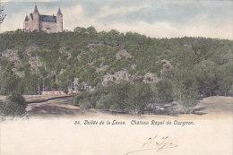 Vallée De La Lesse - Château Royal De Ciergnon (précurseur, Colorisée) - Ciney